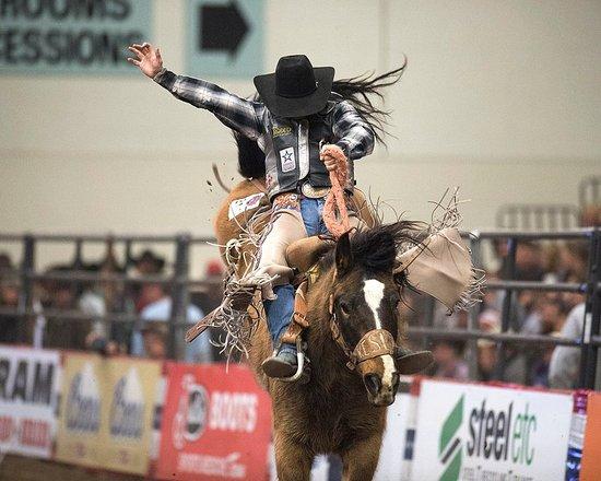 Wenatchee, WA: Bronc Riding