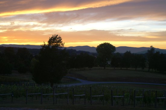 Barboursville, VA: As the sun sets in the West, the mountains are stunning