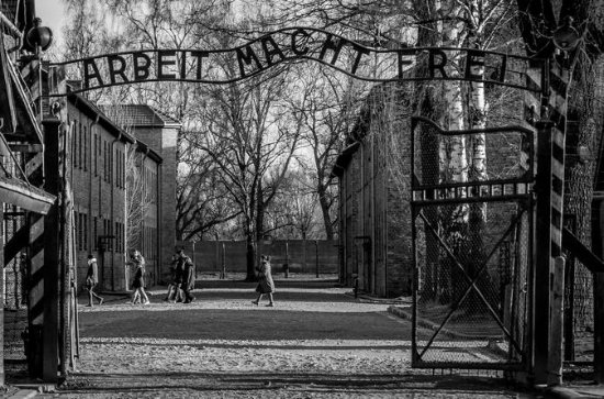 Auschwitz Birkenau Memorial and Museum Guided Tour from Krakow