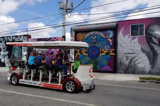 Wynwood Sightseeing Tour
