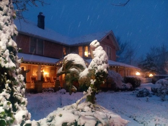 The Inn at Mountain View: Snow Rooster