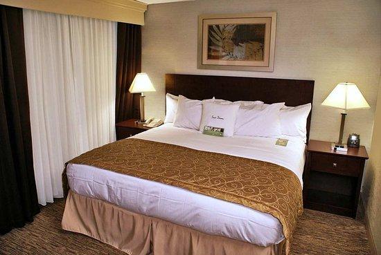 Rocky Mount, NC: King Guestroom