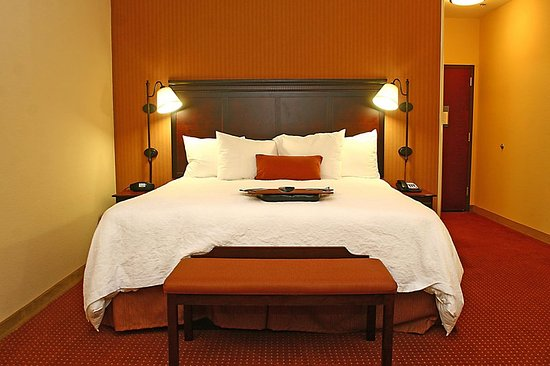 Buda, TX: Guest Room