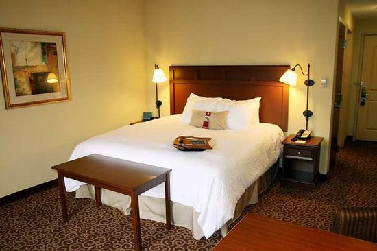 Murray, KY: Guest Room