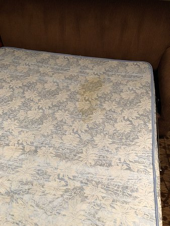 Old dirty mattress in sleeper sofa Picture of Sheraton Dallas