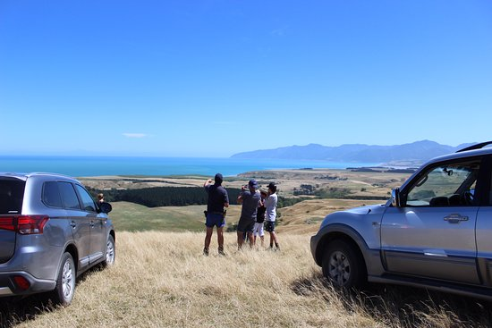 Wairarapa, Nuova Zelanda: Farm Experience guests are shown the views