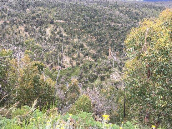 Hamilton, أستراليا: McKenzies Falls