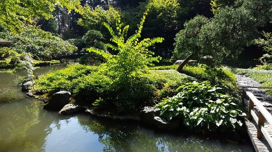 Nitobe Memorial Garden: Peaceful and beautiful