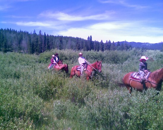 Island Park, ID: Beautiful rides for all ages including grandmas and little kids
