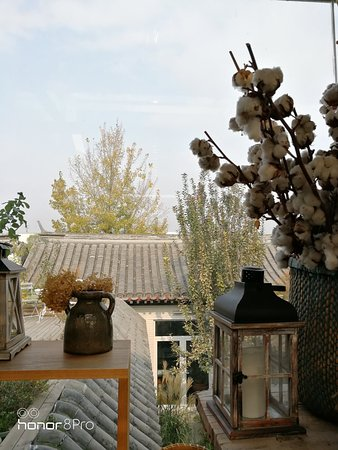 Peking Garden Boutique Hotel: IMG_20171109_114644_large.jpg
