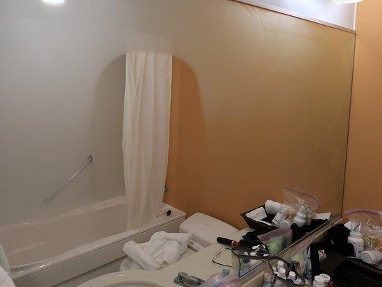 Hotel Niwa Tokyo: Heated mirror at the bathroom sink