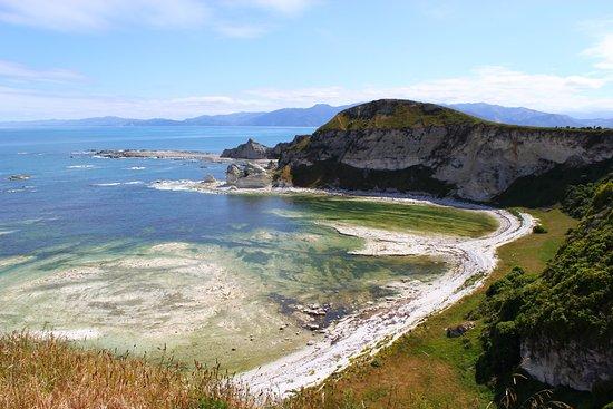 Kaikoura Peninsula Walkway: From the cliff