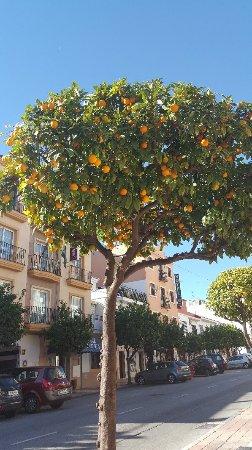 Hotel Dona Catalina : 20171113_111037_large.jpg