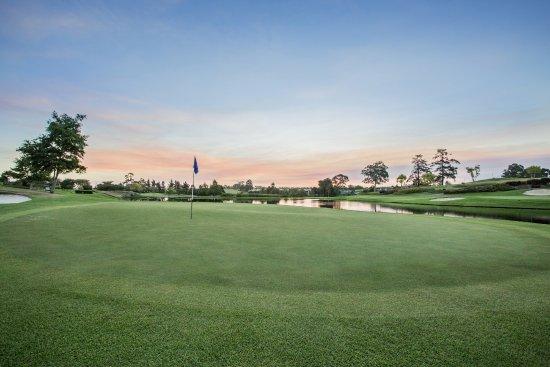 George, Zuid-Afrika: Montagu Golf Course