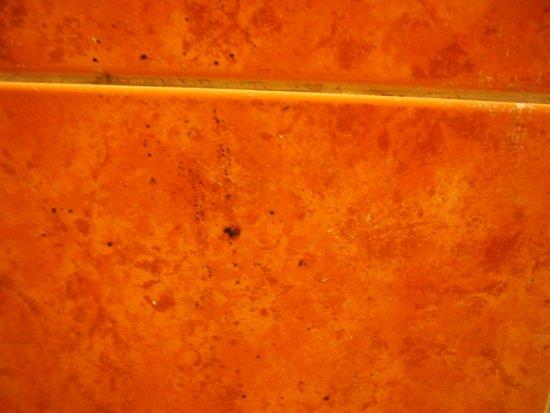 Kenzi Europa : brown smear on wall next to bidet