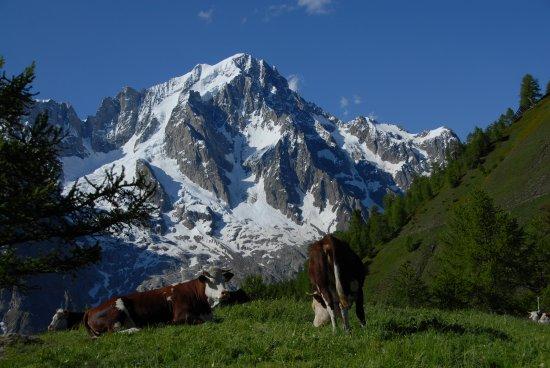 Courmayeur, İtalya: .... ai piedi del Monte Bianco