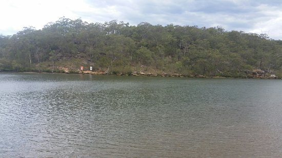 Picnic Point, Australia: 20171103_145943_large.jpg