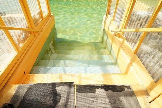 Takhini Hot Springs: DSC00051_large.jpg
