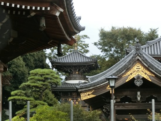 Bilde fra Akishima
