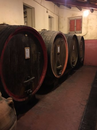 Montefalco, อิตาลี: One of the visited winery