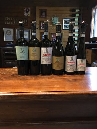 Montefalco, Italy: Tasted wines