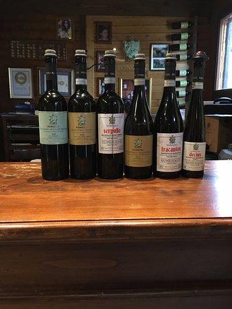 Montefalco, Italia: Tasted wines