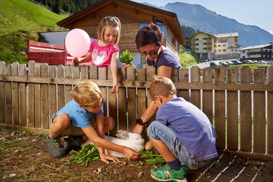 Oetz, النمسا: Streichelzoo für die Kinder