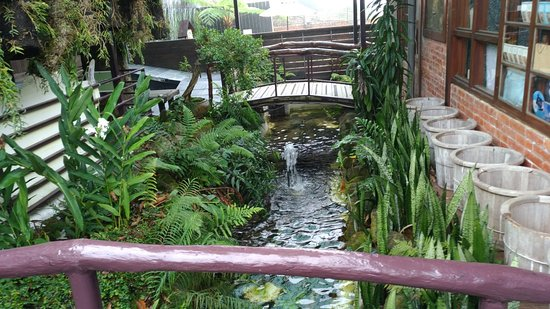 Muchun Hotspring Resort : P_20171112_093708_large.jpg