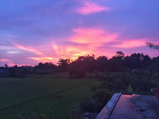 Heaven Villa Ubud Photo