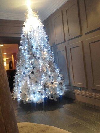 Airth Castle & Hotel: 20171114_192754_large.jpg