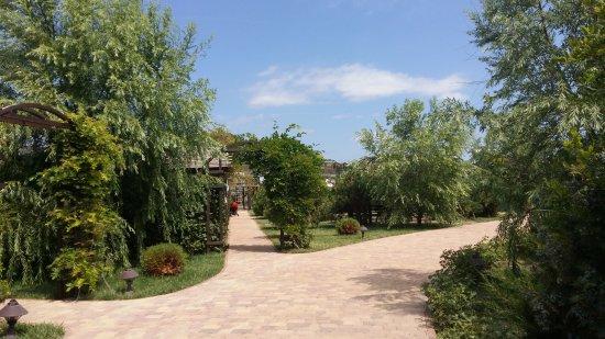 Veselovka, Russia: Территория