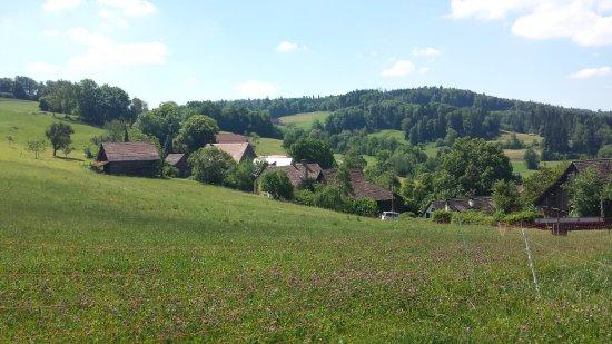Uetliberg, Swiss: 只見青草樹木,農舍