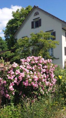 Uetliberg, Swiss: 農舍充滿田園氣息,
