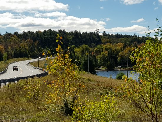 Spruce Bog Boardwalk Trail: Highway 60