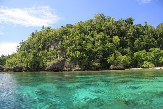 Togian Islands, Indonesia: Harmony Bay Resort, Kadidiri Island, Togeans.