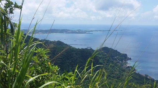 Wondering Soles Grenada