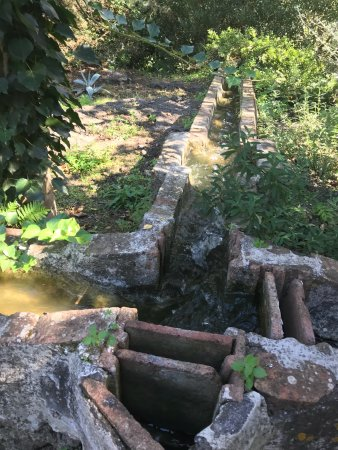 Mascalucia, Italien: photo3.jpg