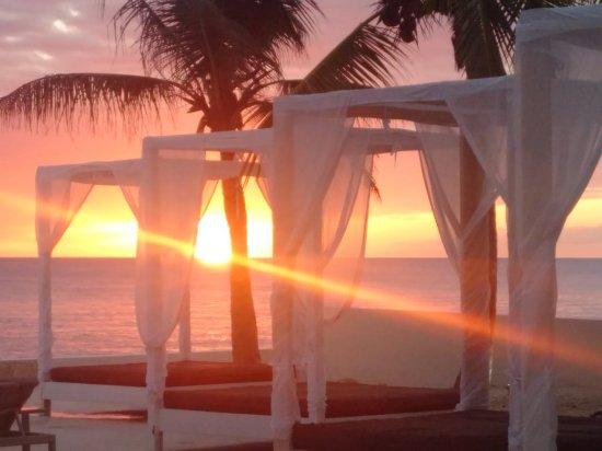 Viva Wyndham Dominicus Beach - An All-Inclusive Resort: IMG_20161208_175831_large.jpg