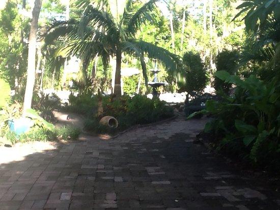 The Gardens Hotel: Tuin