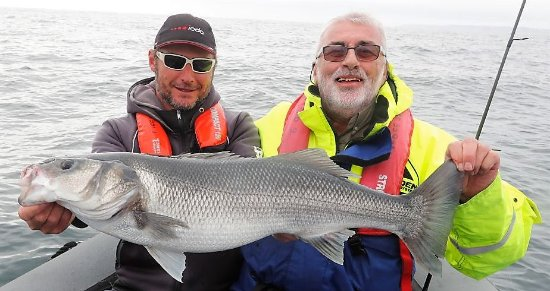 Pecheaubar-morbihan  Guide de pêche