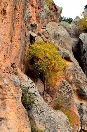 Frig Vadisi Tabiat Parki: Frig vadisi ve sonbahar
