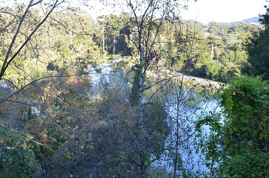 Stow Lake : Elevated view of lake