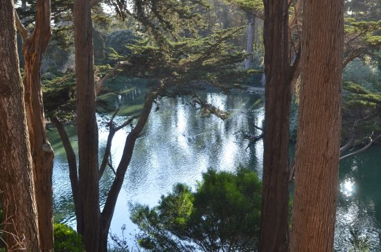 Stow Lake : View of lake from Strawberry Hill