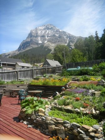 Mt. Burgess Guesthouse: Relax in the garden