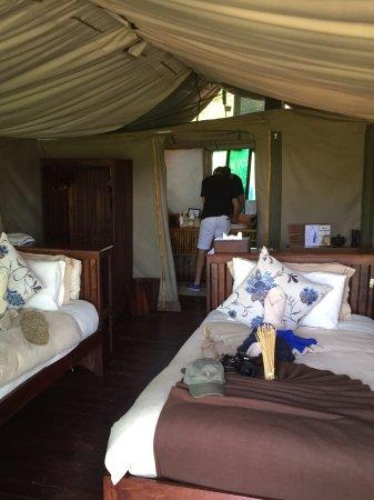 Kwara Camp - Kwando Safaris Image