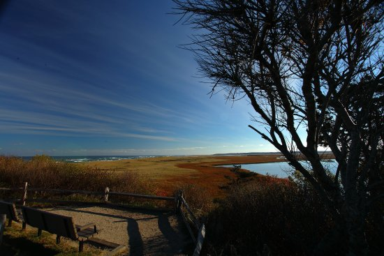 Eastham, MA: Looking out at the salt marsh seperating Nauset Bay and Coast Guard Beach (nOV.2016)
