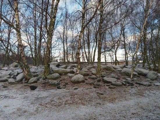 Mustasaari, Finland: Björkö-Panike Vaellusreitti