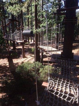 Tahoe City, Kaliforniya: flying squirrel, easy course