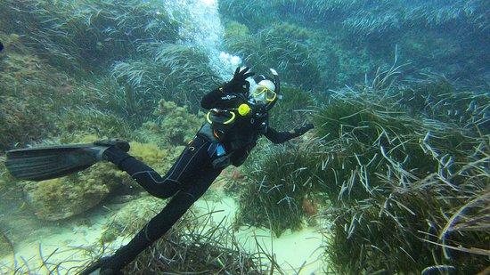 Munxar, Malta: Third dive naar Dahlet Qorot