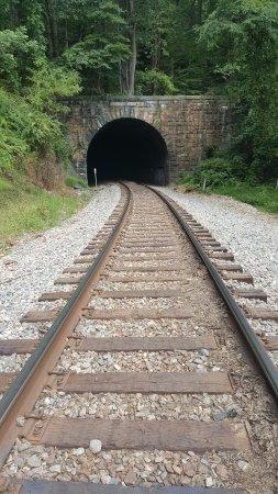 Ellicott City, MD: Bridge with Train Tracks